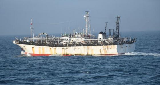 Chinese poachers swarm Argentine EEZ but Falklands catches OK
