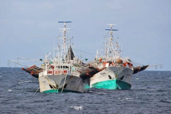 Falklands Seafood industry faces environment of uncertainty