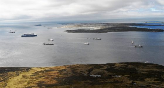 Industry concern at likely imposition of high tariffs on Falklands seafood products