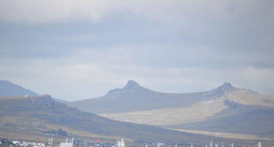 Jiggers prepare for illex season in Falklands waters