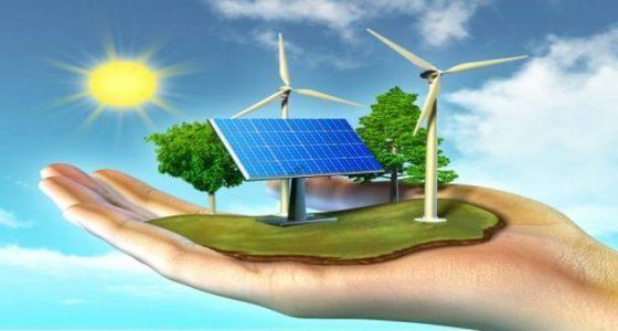 Survey says renewable energy missed opportunity